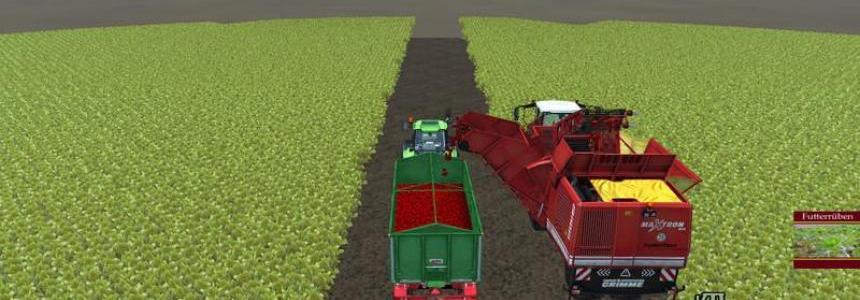 Crop fodder beet v1.0