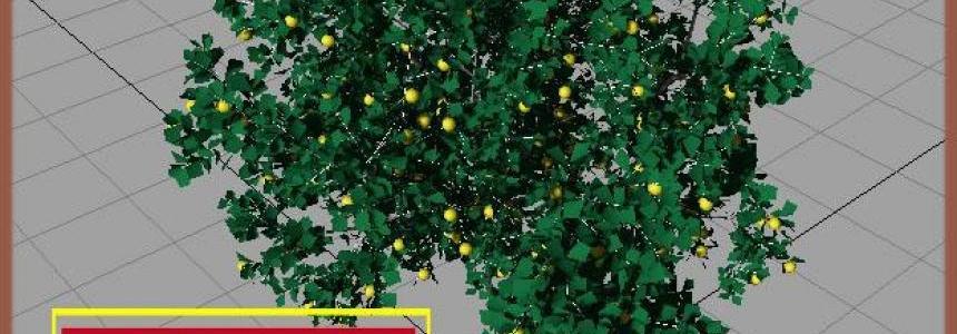 Citronnier (arbre) by XAV40 v1.0