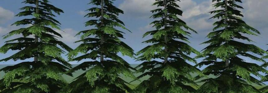 Green fir v1.0