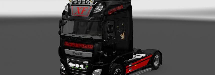 Black Cat Trans skin for DAF XF euro6 v1.0