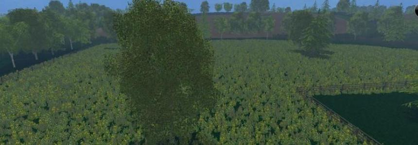 Forest of Dean MP v1.3