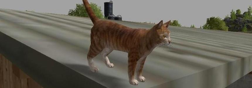 Cat v2.0