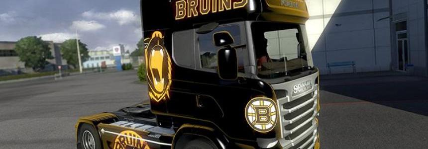 Boston Bruins Skin