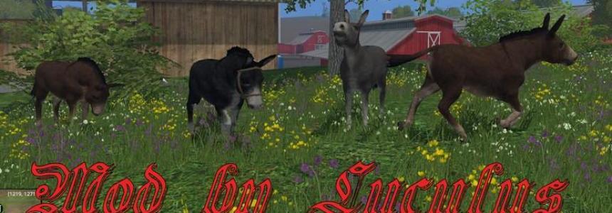 Donkey v1.1