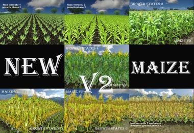 Fresh corn v2.0
