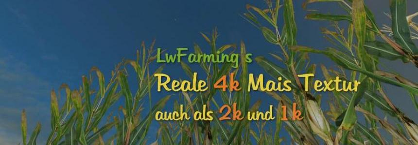 Reale 4k corn v1.1
