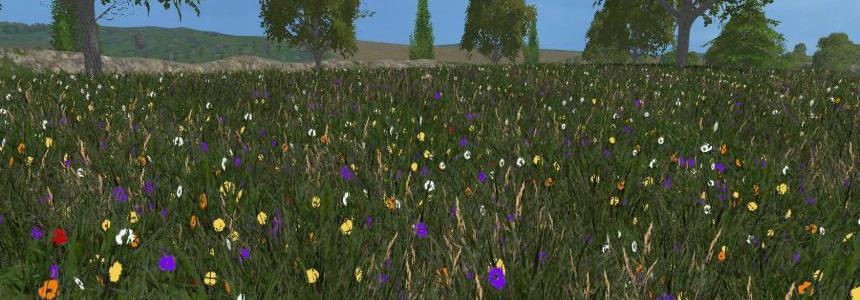 New grass texture