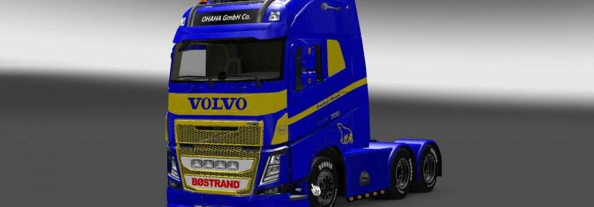 Volvo FH 2013 by Ohaha Trucker's Dream Skin