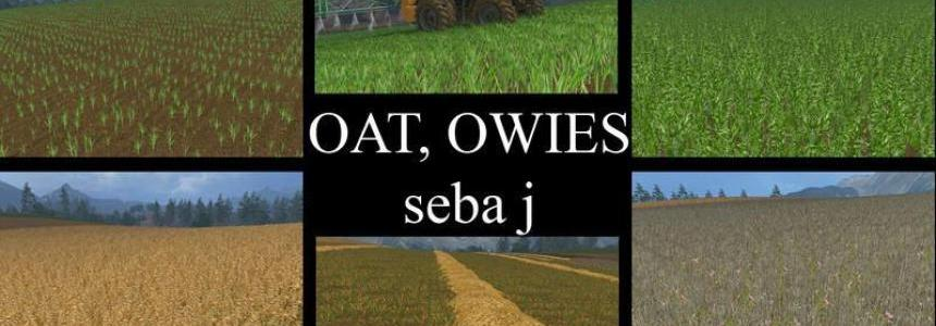 OAT Owies TEXTURE v1.0