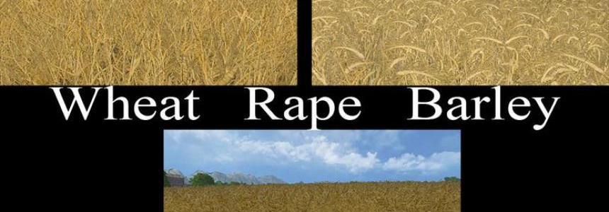 Weizen Texture von Gerste und Raps v1.0