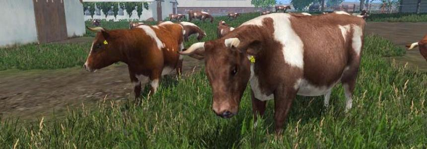 MODELS COWS v3.0