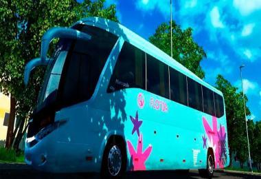 Bus G7 4x2 v3