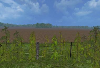 Nettles foliage texture v1.0