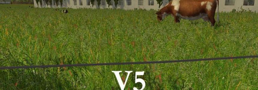 New grass texture v5