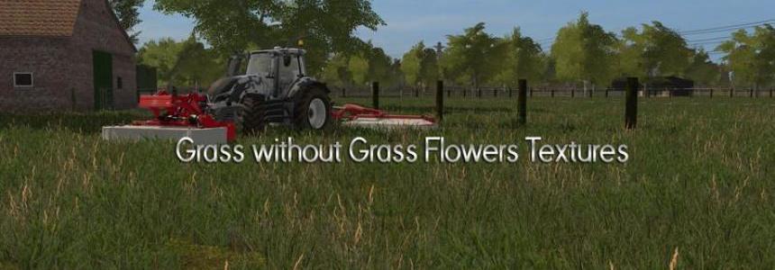 Grass Texture - No Flowers v1.1