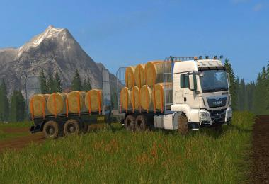 MAN BALETRANSPORT v1.0