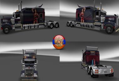 Kenworth W900 Long Metallic Long Style 6 7 8  Style Skins