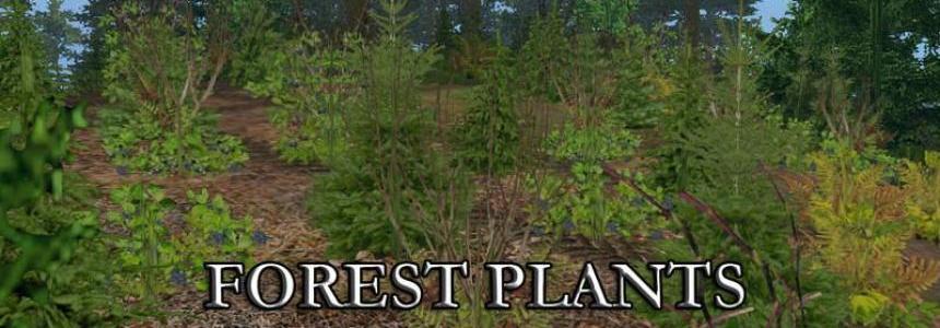 FOREST PLANTS FOLIAGE v1