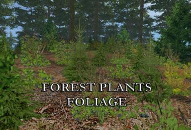 FOREST PLANTS FOLIAGE v1