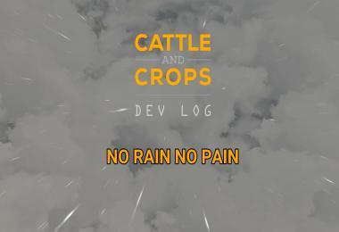 CaC - DevLog - No Rain - No Pain