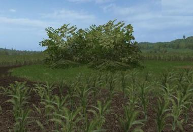 Placeable big Bush v1.0