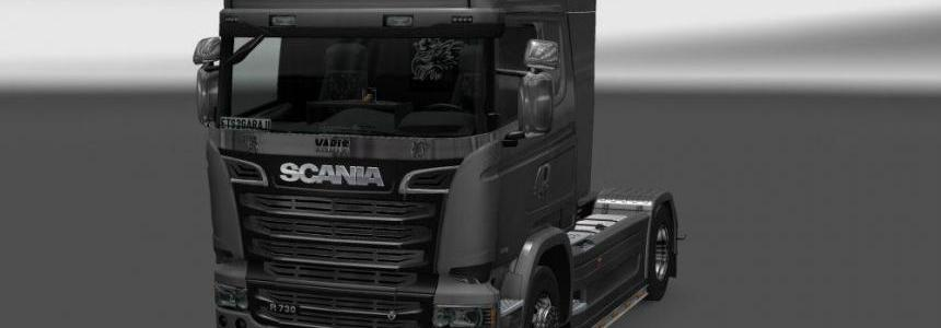 Scania New Stoneguard v1.0