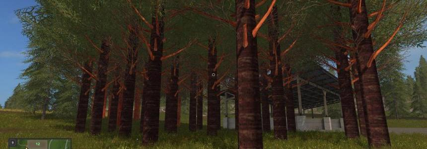 RedWood Trees V1.0