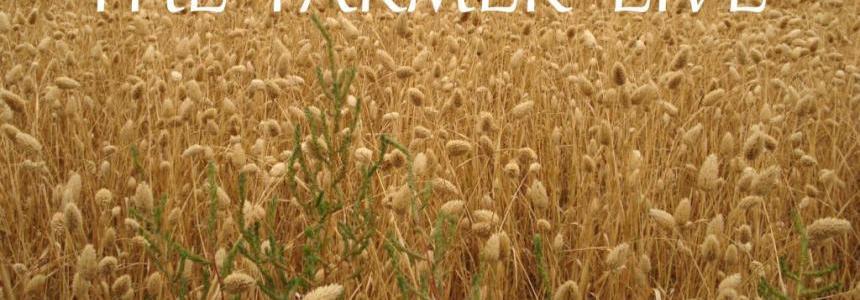 The Farmer Live v1.1