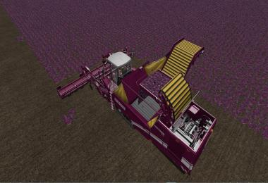 Grimme harvesters from Vaszics