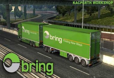 Bring Logistics Tandem Skin v1.28