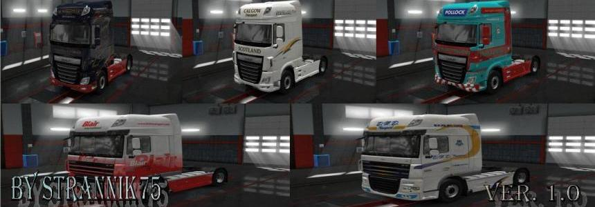 Packaging Skin for Truck DAF XF v1.0
