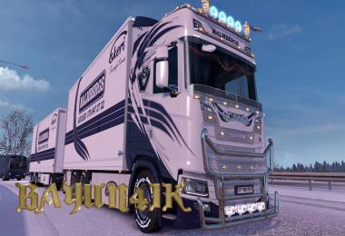 Scania S 2016 SCS Malmbergs skin by Kraker&NTM addon 1.30