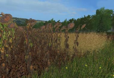 Forgotten Plants - Textureset (Prefab) v1.1.0.0