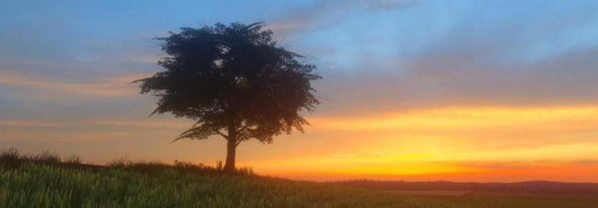 Lone Oak Farm v1.0.0.2