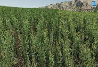 Forgotten Plants - Wheat / Barley v1.0