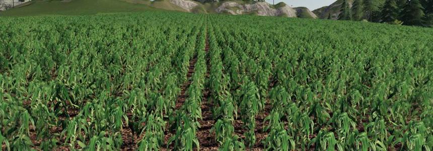 Forgotten Plants - Maize v1.0.0