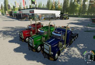 FS19 Pete 389 Heavy VE1 v1.0