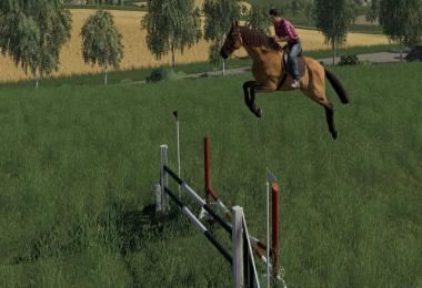 Obstacles Horse sport v1.0.0.0