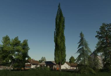 Placeable poplar v1.0.0.0