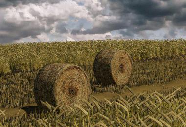 Wheat – Barley – Windrow – Bales – Animations v1.0
