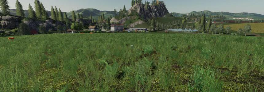 Motley grass v1.0