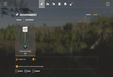 Government Subsitity v1.0.1