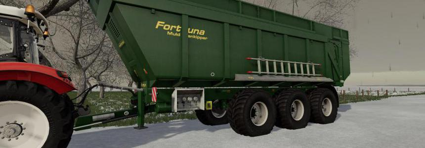 Fortuna FTM 300 / 8.0 v1.0.0.0