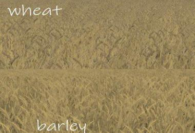 WHEAT - BARLEY TEXTURE v1.0.0.0