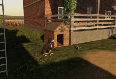 Polish Dog House v1.0.0.0