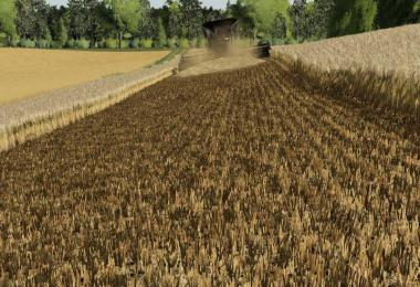 Barley / wheat texture v1.0.0.0