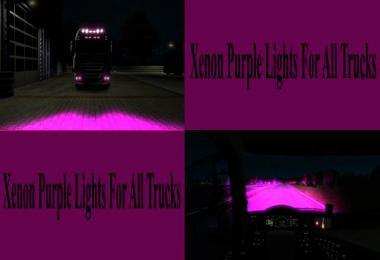 Purple Xenon Lights for all Trucks v1.0